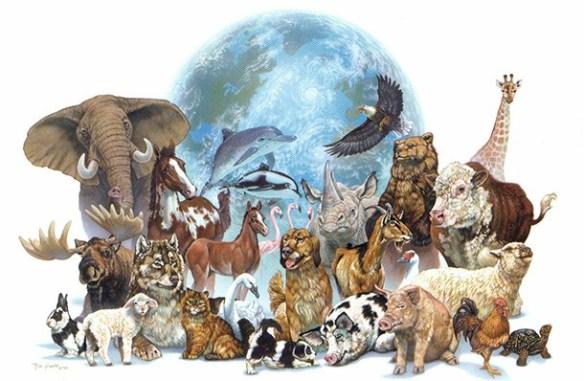 SOÑAR CON ANIMALES