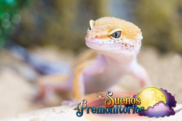 Soñar con lagartos