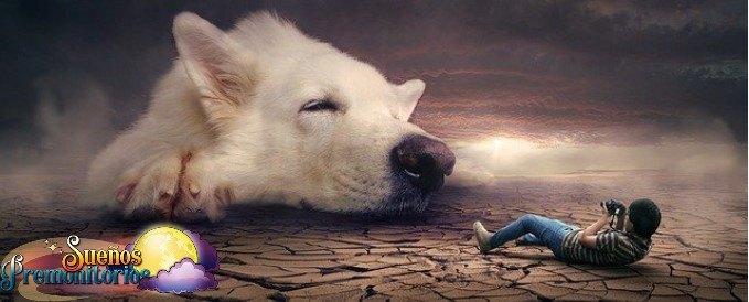 Perro gigante en un sueno premonitorio