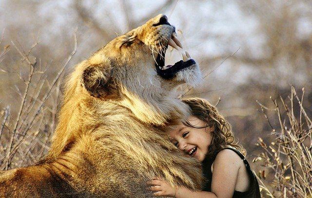 sonar con leones