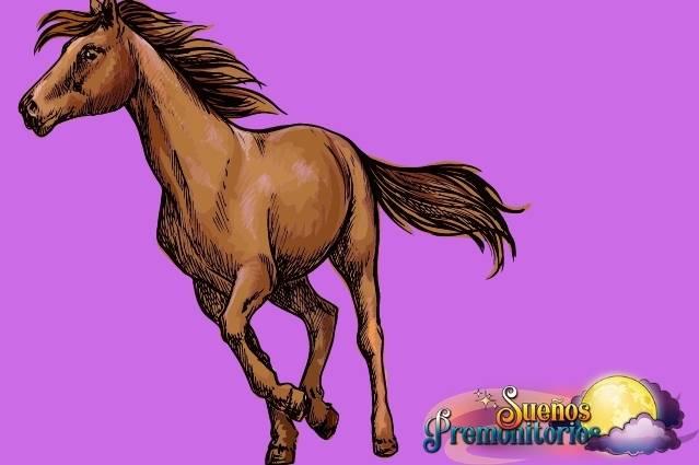 sonar con caballos salvajes