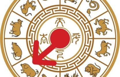 Año del Cerdo en el Horóscopo Chino 2021