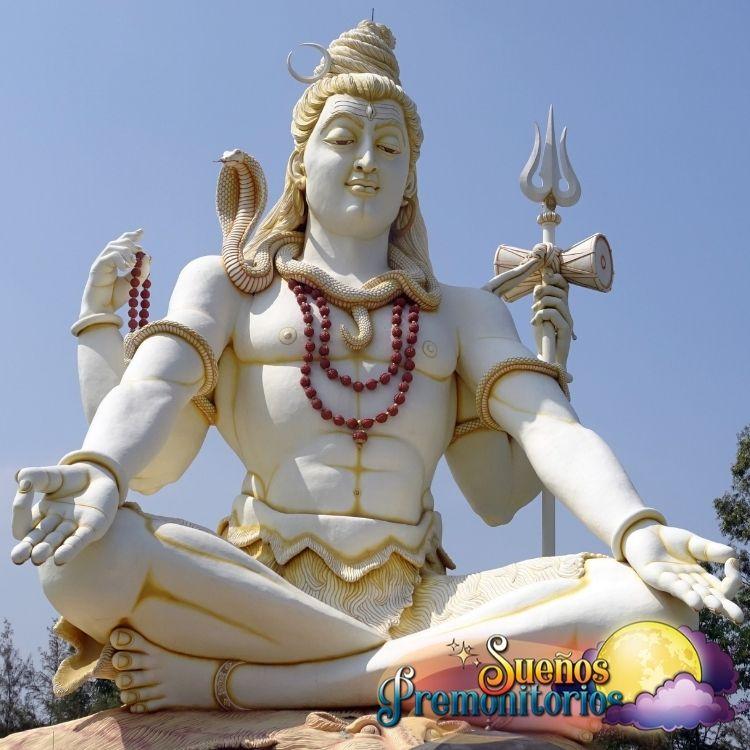 Semillas de Rudraksha Shiva